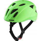Alpina Ximo LE Helmet